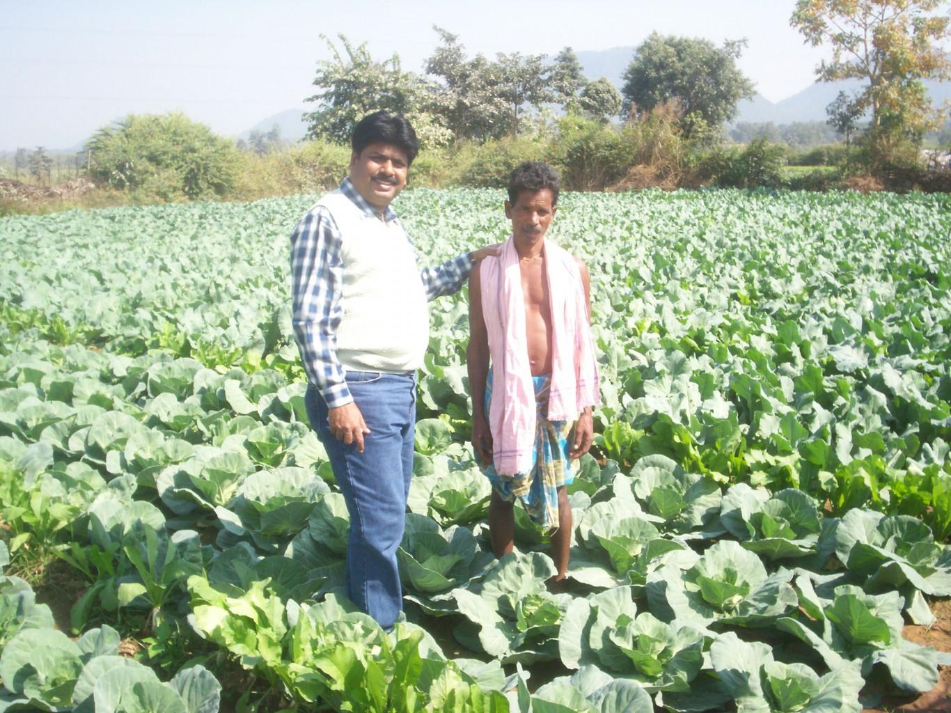 Shashya Shilpa Abhiyan Project