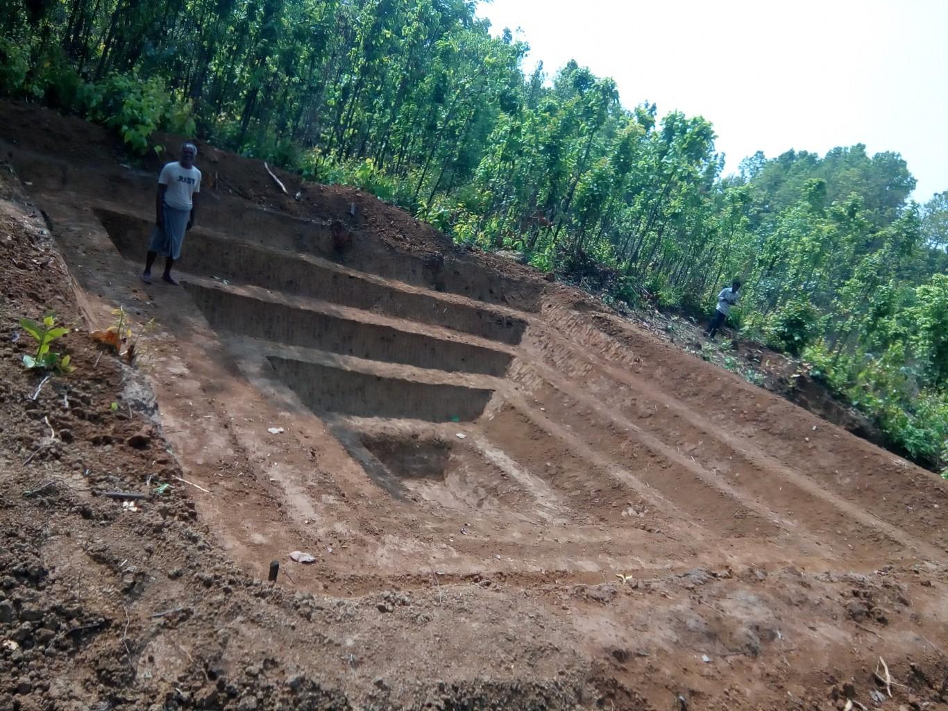 MGNREGA-CFT-NRLM Project